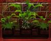 ~GD~ Large Lit Planter