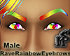 Rave Rainbow Eyebrows M