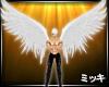 ! Angel Wings #Animated