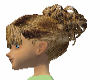 medium Brown 003 hair