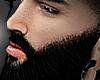 X▬TW beard
