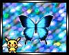 Moon Butterfly