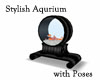 Stylish Aquarium + Poses