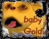 baby Goldie