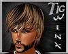 TWx:Cute Man TIG BROWN