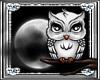 *D* Midnight Owl