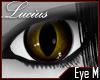 LMC Poxy's Eyes [RQ]