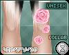 . vitae   leg roses