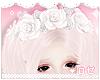 ♔ Roses White