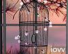 """Iv""""Cage Light violet"""