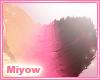 .M Keyk Tail