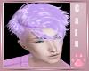 *C* Aiolo Lavender