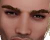 Eyebrown Sourcille