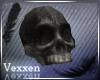 + Old Skull +