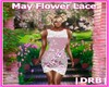 |DRB| May Flower