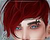 Scarlet Reg Hair