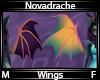Novadrache Wings