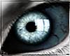 Walking Dead Eyes