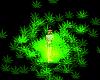 Green Aura lol