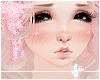 × Shy Wendy PL