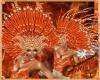Hair carnaval orange