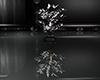 -SWD- Silver Leaf Plant