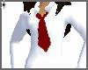School Shirt W~ Tie