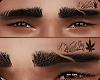 Eyebrows Weed