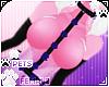 [Pets] Kes |rose harness