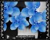 S; Judgeful FlowerCrown