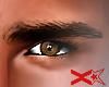 X.Star.Eyebrows★X