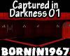 Captured in Darkness 01