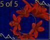 5 Tiger Lily Bracelets