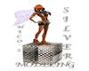 Modeling Silver Box Nico