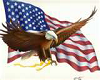 Eagle & American Flag