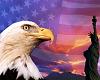 Eagle & Liberty