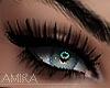 Xyla big eyelashes