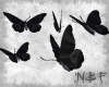 Five dark butterflies