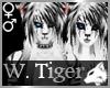 White Tiger Caprice M/F
