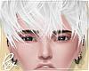 Ash White Messy Hair