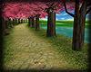 rD spring lake park