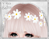 Y' White Flower Crown