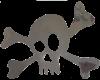 Metal Skull & Crossbones