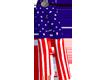 Male USA Flag Pants