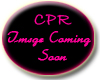 *CPR October Rooms Frame