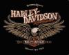 Harley Saloon
