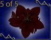 5 Red Lily Bracelets