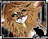 [C] Kittin V.3 Hair