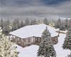 Winter Woods Home Mesh
