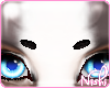 [Nish] Pride Brows M